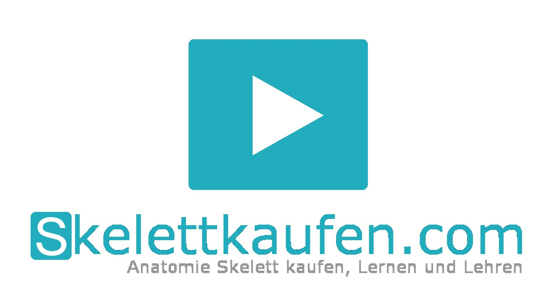 Skelett kaufen Video Test Video Skelett infos